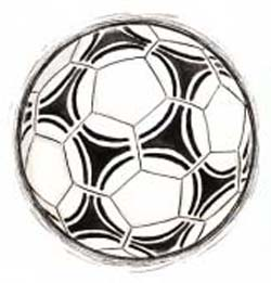 サッカー中継AIカメラ「この白くて丸いのは…ボールやな!」