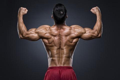 【画像】背中の筋肉の謎wwwwwwww