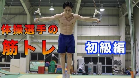 体操選手とかいう筋肉だるまのくせに猫みたいな柔軟性をも兼ね備えてるパーフェクトボディ