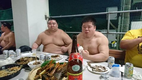 強い相撲取りってただのデブじゃなく筋肉質ですごい身体してるよなwwwww