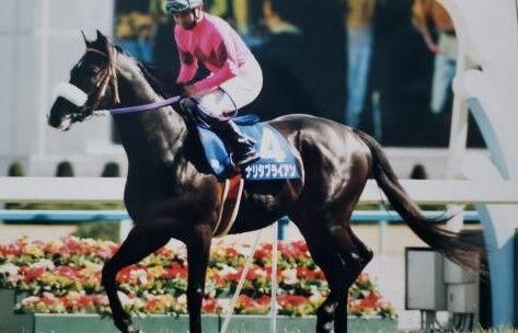 ●【悲報】ナリタブライアンさん、競走馬人生最後の最後にふざけてしまう