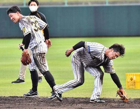 【朗報】阪神タイガースの守備練習が凄過ぎると話題にwww